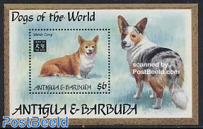 Welsh corgi s/s