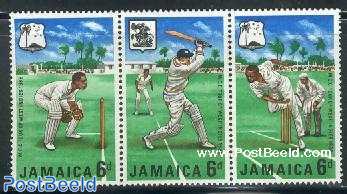 Cricket 3v