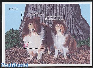 Dogs s/s, Shetland sheepdog