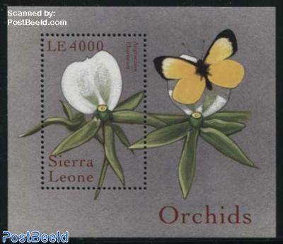 Orchids s/s, angraeum eburneum